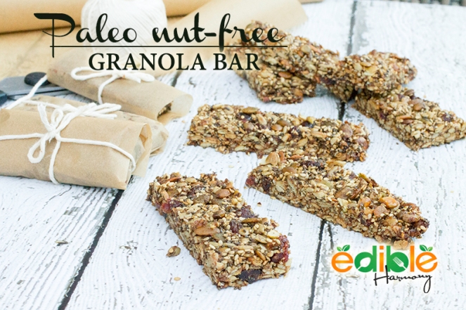 Paleo Granola bar (nut-free)