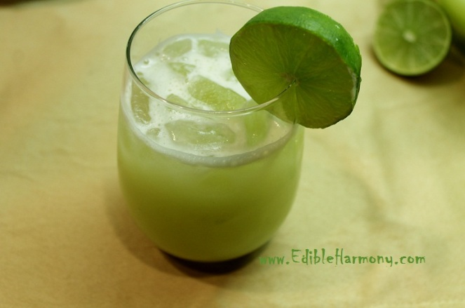 Blended Lemonade or Limeade Recipe